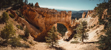 Detail Of Bryce Canyon From Pa...