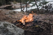 Wild Campfire Next To The Water In A National Park In Sweden