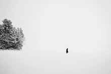 Lone Figure Walking Across Fro...
