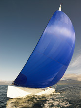 Sail Boat With Rigged Blue Spi...