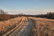Dirt Road In A Countryside Field In Dry Late Autumn