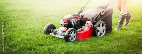 Fotografia Lawn mover on green grass in modern garden.