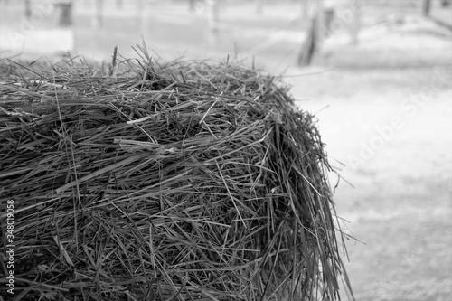 Obraz na płótnie Close-up Of Hay Bale