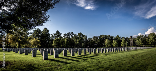 Fotografiet Panoramic View Of Cemetery Against Sky