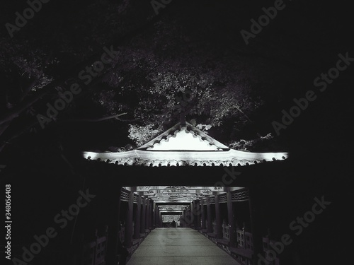 Illuminated Footbridge At Night Fototapet
