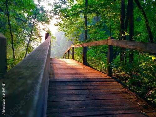 Canvas Print Wooden Footbridge In Forest