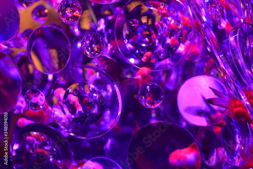 Full Frame Shot Of Fish Tank Fototapet
