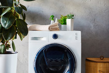 Plants, Towel And Bottles On W...