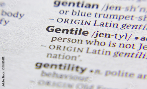 Gentile word or phrase in a dictionary. Wallpaper Mural