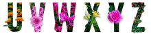 Floral Letters. The Letters U,...
