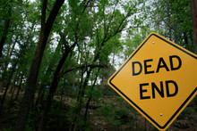 Dead End Sign In Forest