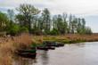 Rzeka Narew. Narwiański Park Narodowy, Podlasie, Polska