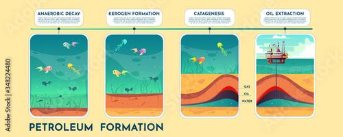 Photo Oil and petroleum formation cartoon vector scheme