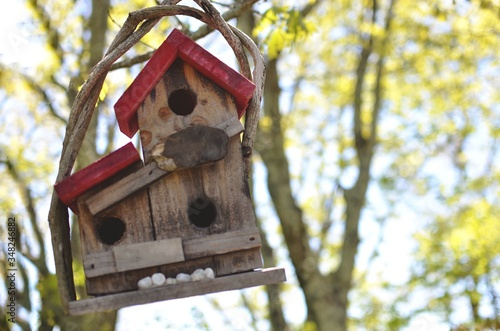 Canvas Low Angle View Of Wooden Birdhouse Against Tree