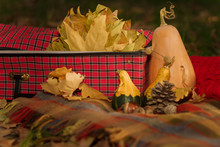Autumn Composition With Plaid,...