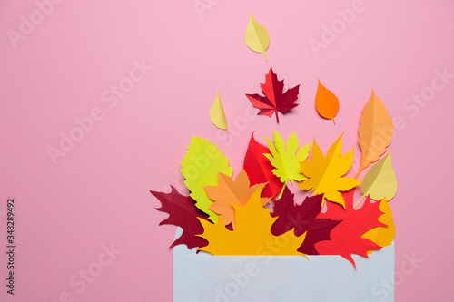 Autumn leaves in an envelope on a pink background Canvas Print