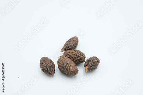 Kembang semangkuk or Sterculia lychnophora or Scaphium affine shot on a white isolated background Canvas Print