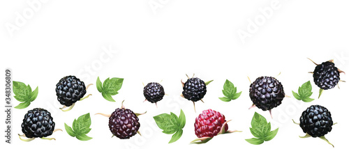 Foto Fresh ripe blackberry with green leaf isolated on white background
