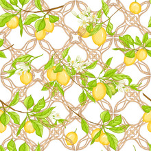 Lemon Tree Branch With Lemons, Flowers And Leaves And Wood Carving In Art Nouveau Style, Retro Style. Seamless Pattern, Background. Colored Vector Illustration. Isolated On White Background..
