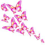 butterfly595