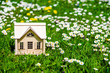 The symbol of the house stands among white daisies