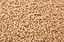Chickpeas Seed Or Garbanzo Bea...