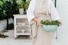 Woman With A Casserole Filled With Garden Green Vegetables And Herbs