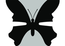 Optical Illusion - Butterfly O...