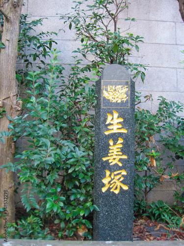 石碑と緑 Wallpaper Mural