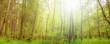 Deutscher Wald, Nationalpark