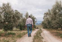 Man Walking Down The Path.