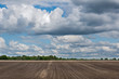 Agricultural landscape: pattern of ridges and furrows in a humic sandy field prepared for cultivation of potatoes under a blue sky with clouds