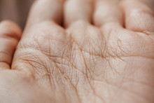 Wrinkles On The Palm Of A Hand...