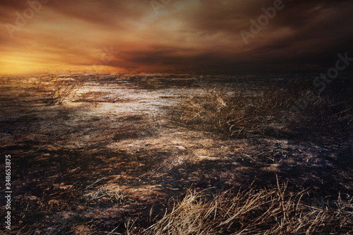 Fotografía After wildfire  with dust and ashes/area of illegal deforestation