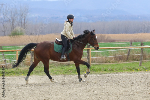 Fototapeta Girl is galloping  on the horse  in the riding school