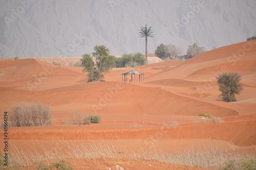 Photo Red Sand dunes in Al Ain,UAE.