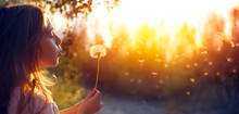 Little Girl Blowing Dandelion Flower At Sunset - Defocused Background