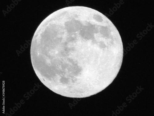 Canvas-taulu Majestic Full Moon