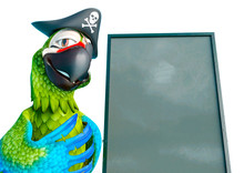 Parrot Pirate Is Beside The Sa...