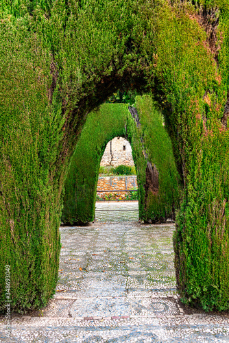 Two bog green hedge arches in a garden Wallpaper Mural