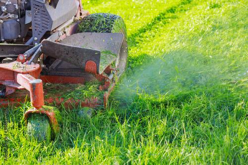 Fotografia Close up of man using a lawn mower a gardener cutting grass by lawn mower