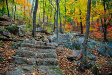 Stone Steps During Autumn