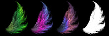Set Of Mystical Animal Feathers With White Clipping Mask