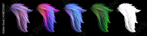 Fototapeta Mystical colorful smooth angel wings set obraz
