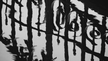 Reflection Of Iron Gate