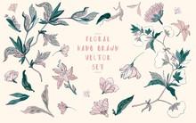 Hand Drawn Floral Vector Set. ...