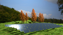 Solar Panels Farm In Green Fields During Sunrise. Ecology Environmental Background For Presentations