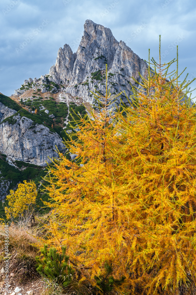Fototapeta Colorful autumn alpine Dolomites rocky  mountain scene, Sudtirol, Italy. Peaceful view from Falzarego Pass. Picturesque traveling, seasonal, nature and countryside beauty concept scene.