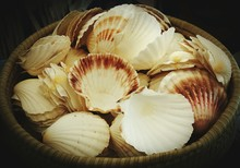 High Angle View Of Seashells In Basket