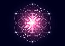 Seed Of Life Symbol Sacred Geo...